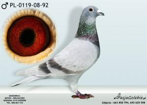PL-0119-08-92