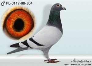 PL-0119-08-304