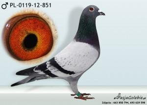 PL-0119-12-851